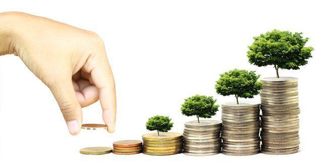 Spletna stran - investicija